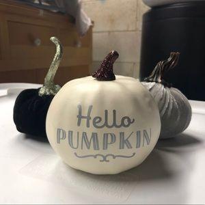 Set of 3 Pumpkin Fall Decor